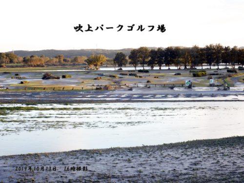 10月13日16:50撮影